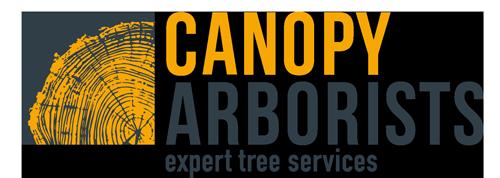 Canopy Arborists